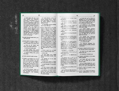 Hans Wehr Dictionary